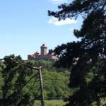 Blick auf die Wachsenburg
