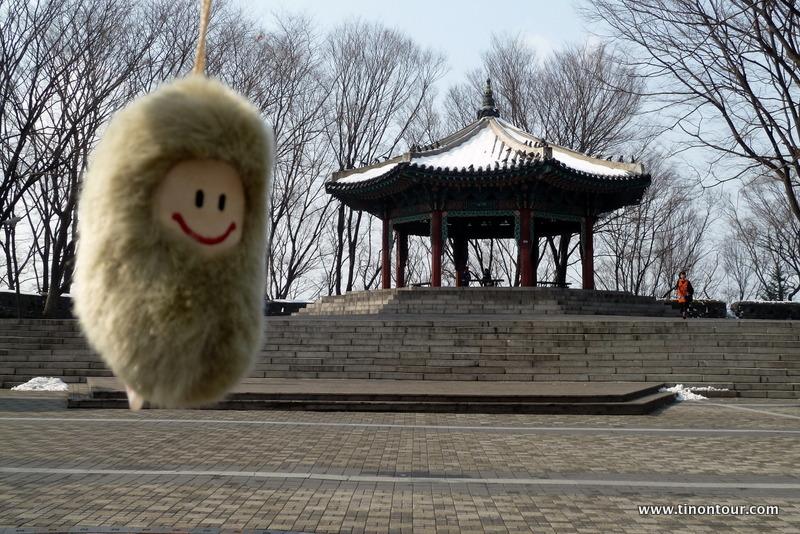 Die Puffbohne vor einem traditonellen koreanischen Pavillion