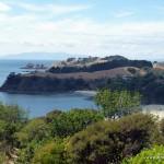 Waiheke Island - Insel vor Auckland