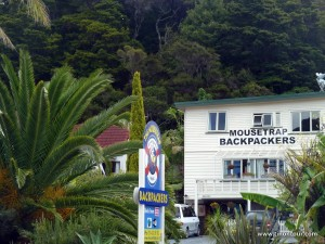 Mousetrap Hostel in Paihia