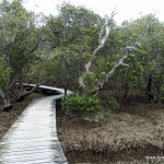 Weg zu den Harura Falls