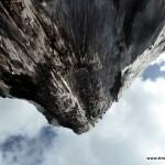 Blick in den Himmel - entlang eines Kauri Baumes (bzw. Reste von diesem)