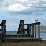 Direkt vorm Hostel - der Zugang zum Meer ... was will man mehr?