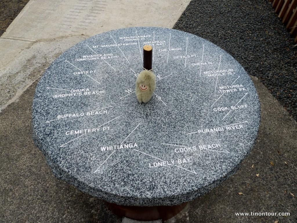 Die Puffbohne im Mittelpunkt ... hier im Shakespeare's Lookout nahe Cooks Bay (mit der Fähre von Whitianga zu erreichen)