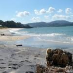 Was für ein Strand - hier gibt es nicht viel mehr dazu zu sagen ... auch die Puffbohne freut's