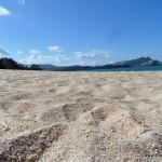 Feinster weißer Sandstrand in der Mercury Bay