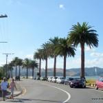 Strandpromenade in Whitianga