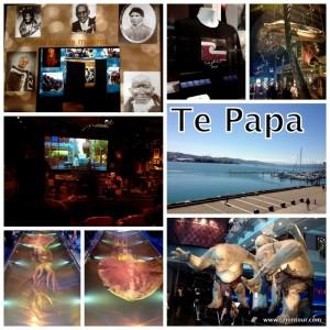 Te Papa - für mich bisher das schönste Museum (Wellington)