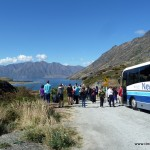 Fotostopp auf dem Weg nach Wanka (Lake Hawea)