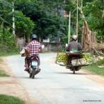 Mopeds sind das Fortbewegungsmittel Nummer 1 - auch in der Provinz