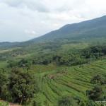 Weites Tal mit vielen Reisterrassen und Wäldern im Pu Luong Naturschutzgebiet
