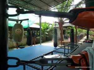 Die Puffbohne im Ring (oder besser am Ring) beim Tiger Muay Thai Trainingscenter auf Phuket (Thailand)
