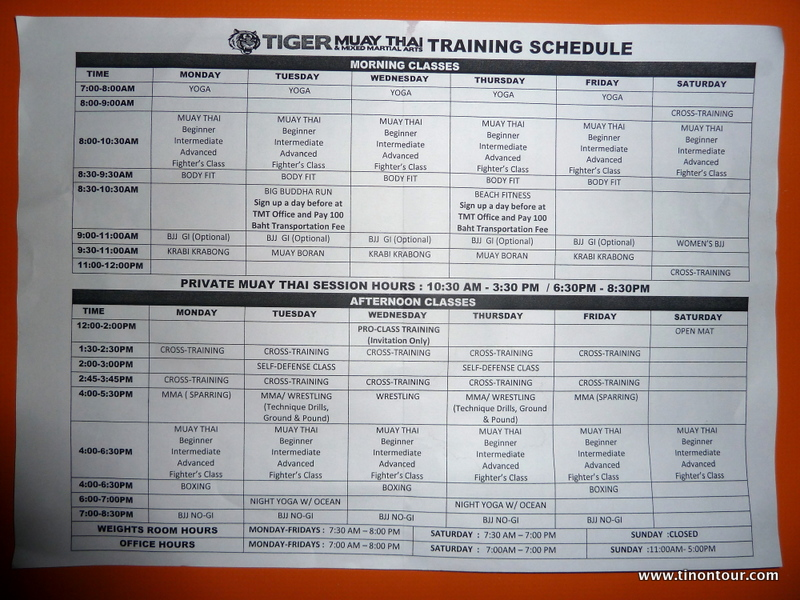 Trainingsplan vom TIGER Muay Thai & MMA Trainingscenter (TMT); Stand Mai 2013