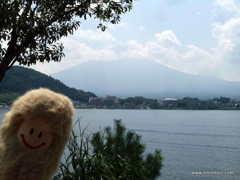 Kein schönes Bild, aber vom Motiv aber eigentlich gut: die Puffbohne und im Hintergrund der Mt. Fuji ... leider die Puffbohne unscharf, der Mt. Fuji in Wolken und die Kratzer auf meiner Kameralinse sind deutlich in den Wolken zu erkennen.