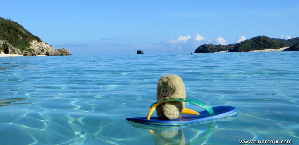 Die Puffbohne geht Baden ... hier auf einer tropischen Insel in Japan: Aka Island