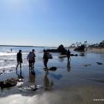 Corona del mark beach