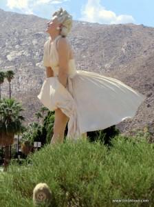 Vor die große Skulptur von Marilyn Monroe in Palm Springs (Kalifornien) hat sich die Puffbohne in den Vordergrund gedrängelt