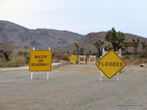Viele der kleineren Straßen im Joshua Tree Nationalpark waren leider gesperrt ...