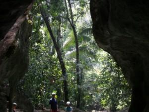 Nachdem die ersten 3 Schwimmzüge gemacht sind, kann man den Blick raus aus der Höhle in den Dschungel genießen - das letzte Mal Tageslicht für die kommenden Stunden ....