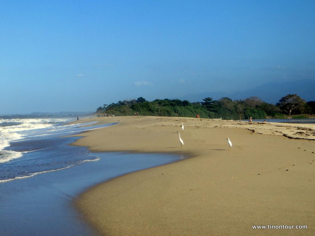 Fluss trifft Ozean - rechts vom Strand ist der Palomino River und links der Ozean