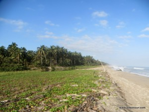 Den Strand in Palomino entlang ...