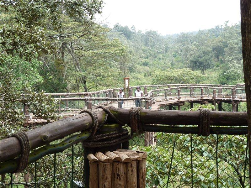 Nairobi Safari Walk - wirklich schön angelegt